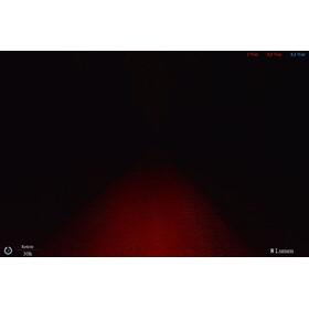 Lupine Rotlicht Sicherheitslampe schwarz/weiß
